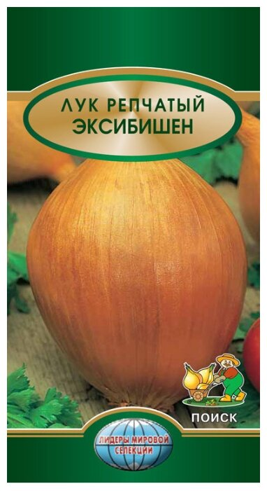 "Семена. Лук батун ""Изумрудный"" (вес: 0,5 г) + салат ""Яхонт"" (вес: 0,5 г)"