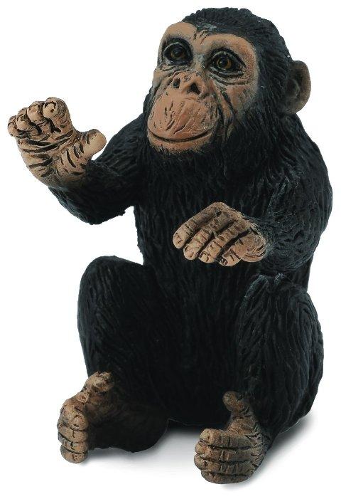 Collecta Детёныш шимпанзе 88494