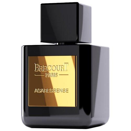 Парфюмерная вода Brecourt Agaressence, 50 мл парфюмерная вода brecourt captive 50 мл