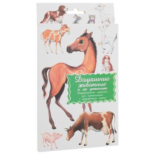 Купить Набор карточек Маленький гений Домашние животные и их детёныши 21x15 см 16 шт., Дидактические карточки