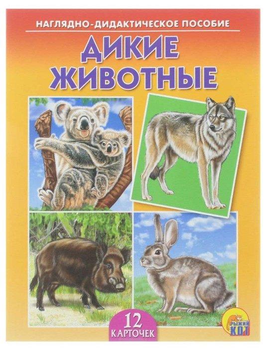 Набор карточек Рыжий кот Дикие животные 16.5x21.5 см 12 шт.