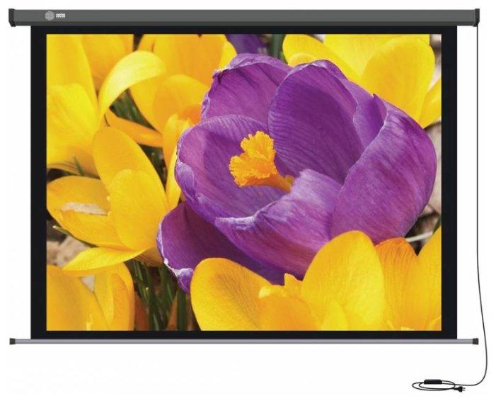 Экран Cactus 168x299см Professional Motoscreen CS-PSPM-168x299 16:9 настенно-потолочный рулонный (моторизованный привод)