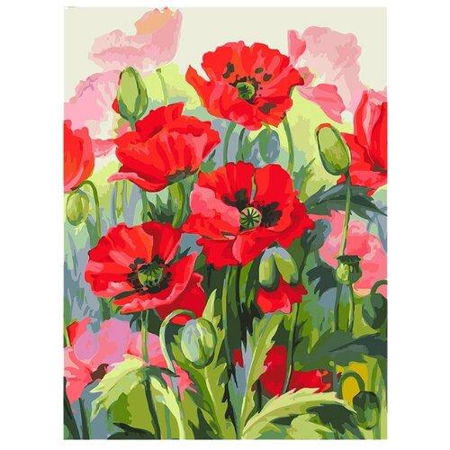 Купить Белоснежка Картина по номерам Восхитительные маки 30х40 см (151-AS), Картины по номерам и контурам