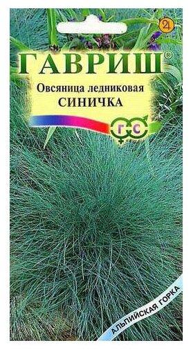 Семена Гавриш Альпийская горка Овсяница ледниковая Синичка 0,1 г