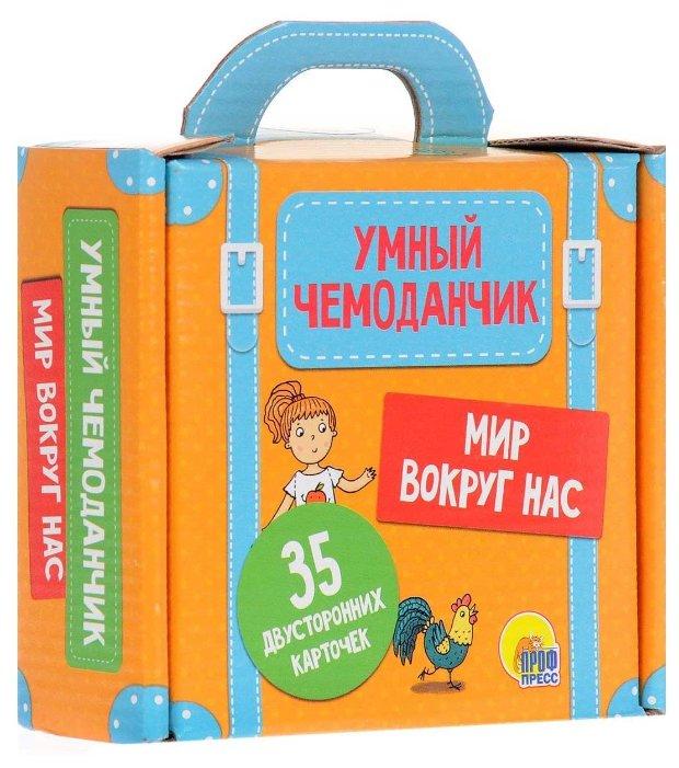 Набор карточек Проф-Пресс Умный чемоданчик. Мир вокруг нас 11.3x11.3 см 35 шт.
