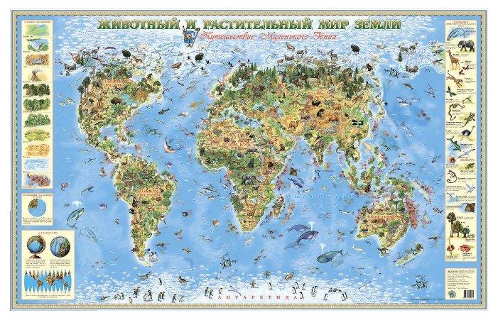 Животный и растительный мир Земли. Детская карта