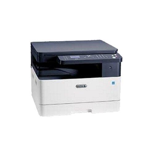 МФУ Xerox B1025DN, белый/синий