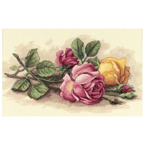 Купить Dimensions Набор для вышивания крестиком Срезанные розы 36 х 23 см (13720), Наборы для вышивания