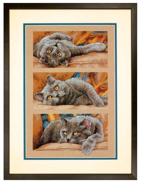 Dimensions Набор для вышивания Кот Макс 25 х 38 см (70-35301)