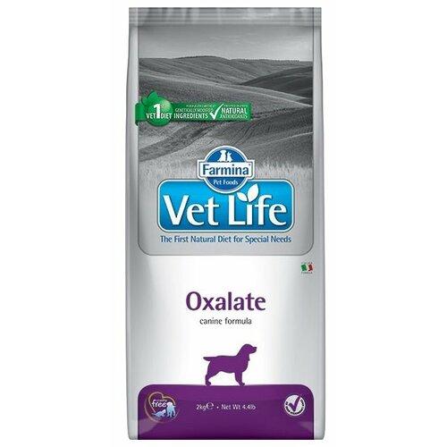 Фото - Сухой корм для собак Farmina Vet Life при мочекаменной болезни, при заболеваниях почек 2 кг консервы farmina vet life renal canine диета при заболеваниях почек для собак 300г