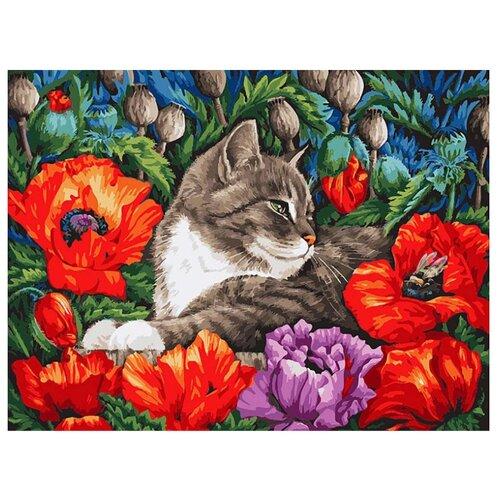 Купить Белоснежка Картина по номерам Кот в маках 30х40 см (183-AS), Картины по номерам и контурам