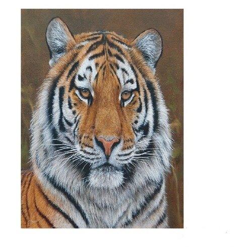 Molly Картина по номерам Амурский тигр 15х20 см (KH0250) molly картина по номерам тигр 40 50 см