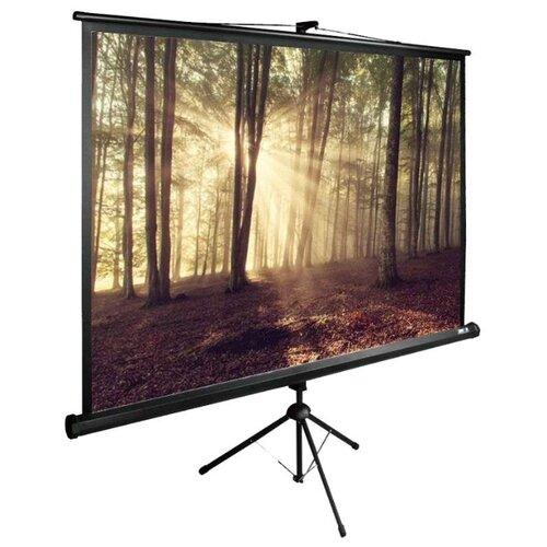 Рулонный матовый белый экран cactus TriExpert CS-PSTE-180х135-BK