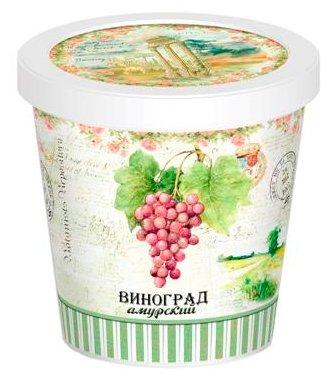 Набор для выращивания Rostok Visa Виноград амурский