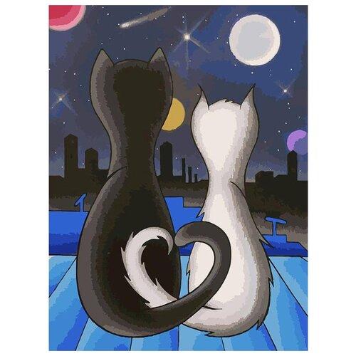 Купить Белоснежка Картина по номерам Вместе 30х40 см (052-AS), Картины по номерам и контурам