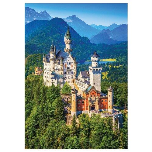 Купить Пазл Danko Toys Горный замок (C1000-09-05), 1000 дет., Пазлы