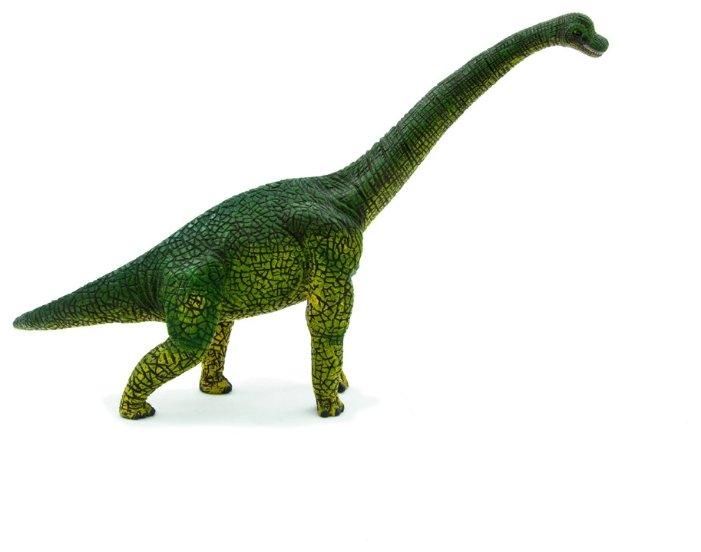 Купить Фигурка Mojo Prehistoric & Extinct Брахиозавр 387044 по низкой цене с доставкой из Яндекс.Маркета (бывший Беру)