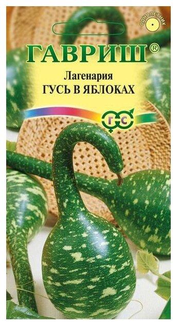 Лагенария Гусь в яблоках