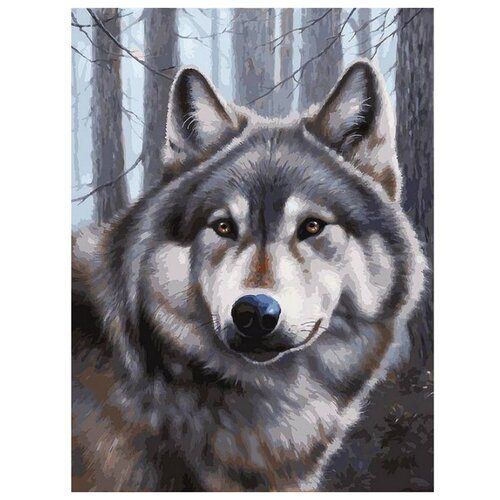 Белоснежка Картина по номерам Волк 30х40 см (090-AS) белоснежка алмазная мозаика белоснежка волк 40х30 см