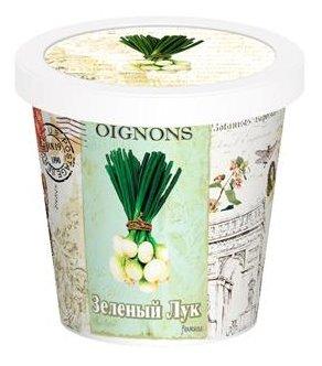 Набор для выращивания Rostok Visa Зеленый лук