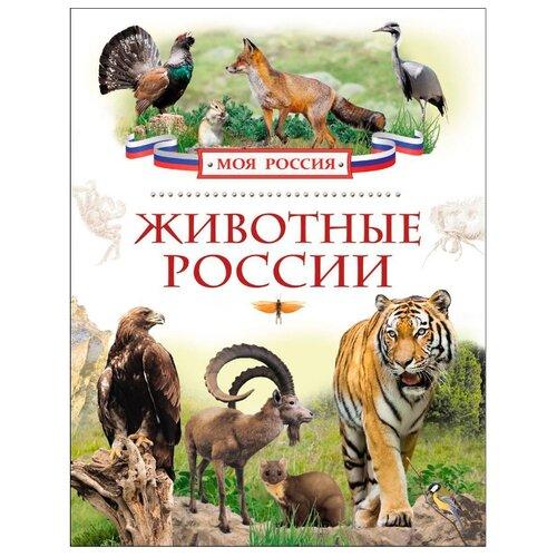Моя Россия. Животные России, РОСМЭН, Познавательная литература  - купить со скидкой
