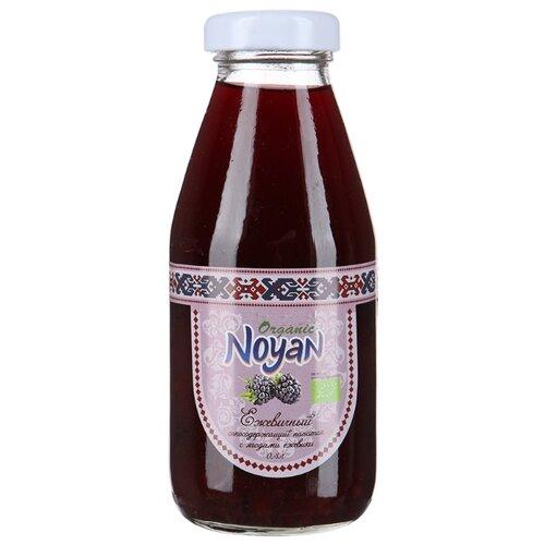 Напиток сокосодержащий Noyan органический Ежевика, 0.33 л