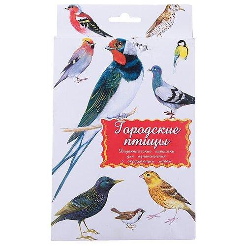 Купить Набор карточек Маленький гений Городские птицы 21x15 см 16 шт., Дидактические карточки