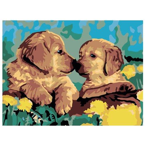 Купить Белоснежка Картина по номерам Знакомство 30х40 см (200-CE), Картины по номерам и контурам