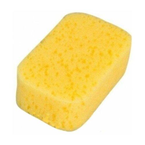 Губка Canpol Babies Коралл (43/100) желтый губка tetex из целлюлозы желтый белый