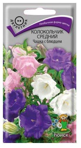 Семена ПОИСК Колокольчик средний Чашка с блюдцем 0.2 г