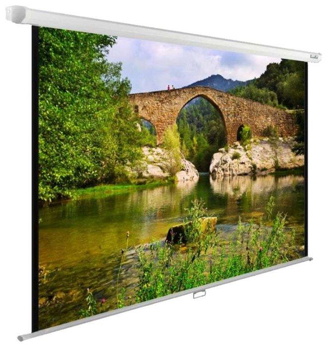Экран CACTUS WallExpert CS-PSWE-220x165-WT, 165х220 см, 1:1, настенно-потолочный белый