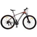Велосипед для взрослых Phoenix 2901 Disk 29