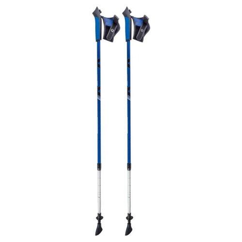 Палка для скандинавской ходьбы 2 шт. ECOS Телескопические Алюминиевые AQD-B020 blueПалки<br>