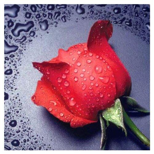 Купить Алмазная живопись Набор алмазной вышивки Красная Роза (АЖ-14) 22х24 см, Алмазная вышивка