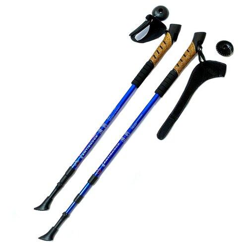 Палки для скандинавской ходьбы 2 шт. Hawk Телескопические с системой Антишок F18441 синий/черный