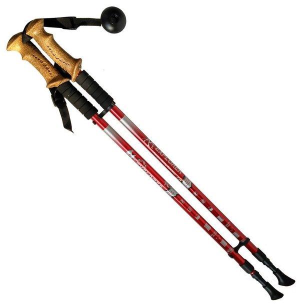 Палка для скандинавской ходьбы 2 шт. Hawk PRO Телескопические с чехлом (пластик, пробка)