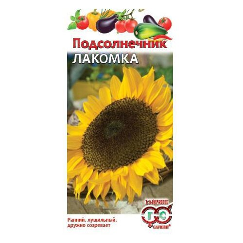 Фото - Семена Гавриш Подсолнечник Лакомка 10 г, 10 уп. семена подсолнечник декоративный гавриш вечернее солнце 0 5 г