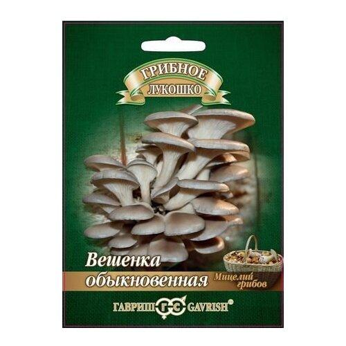 Мицелий грибов Гавриш Грибное лукошко Вешенка Обыкновенная на древесной палочке 12 шт.