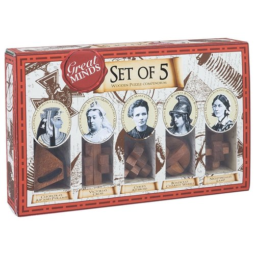 Купить Набор головоломок Professor Puzzle Great Minds Women's Set of 5 Puzzles (GM1528) 5 шт. коричневый, Головоломки