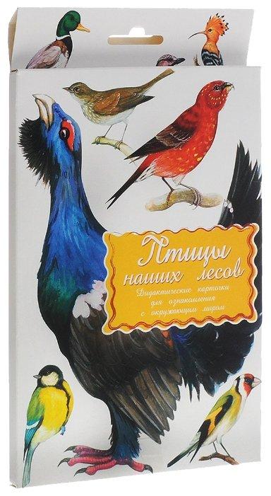 Набор карточек Маленький гений Птицы наших лесов 25x15 см 16 шт.