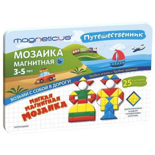 Magneticus Магнитная мозаика 245 элементов (MMT-245)