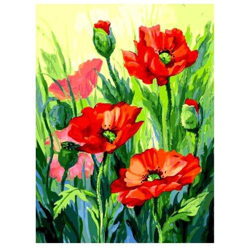 Купить Белоснежка Картина по номерам Красные маки 30х40 см (155-AS), Картины по номерам и контурам