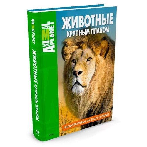 Животные крупным планом. Иллюстрированная энциклопедия machaon книга machaon животные и растения моря