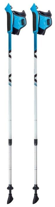 Палка для скандинавской ходьбы 2 шт. ECOS Телескопические Алюминиевые AQD-B017