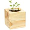 Набор для выращивания Эйфорд Экокуб Лаванда ECB-01-13
