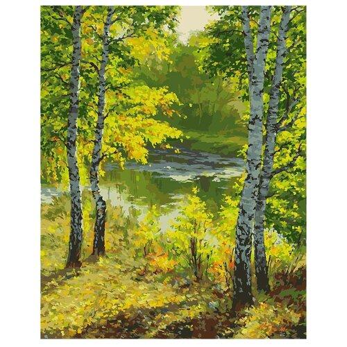 Купить Белоснежка Картина по номерам Подмосковье 40х50 см (026-AB), Картины по номерам и контурам