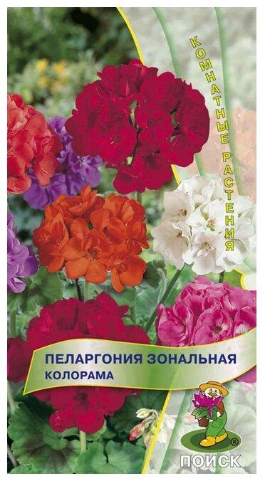 семена пеларгонии Зональная Колорама 0,05г