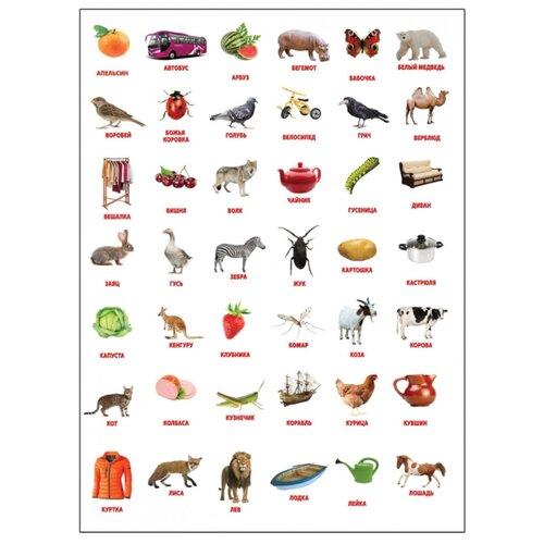 Плакат Лерман Шпаргалки для мамы. Картинки Домана 1-3 годаОбучающие плакаты<br>