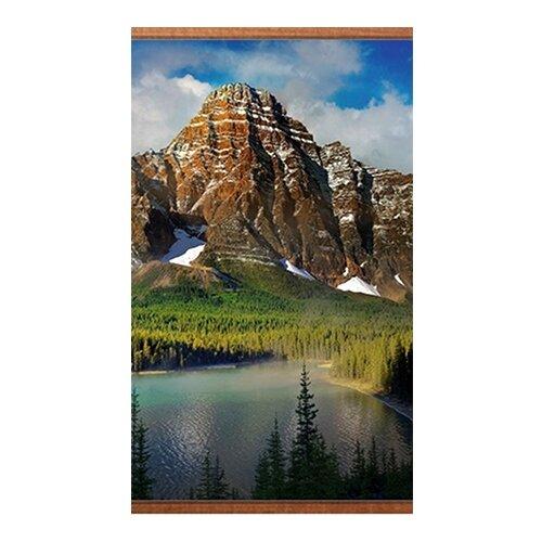 Инфракрасный пленочный обогреватель Домашний очаг настенный горы