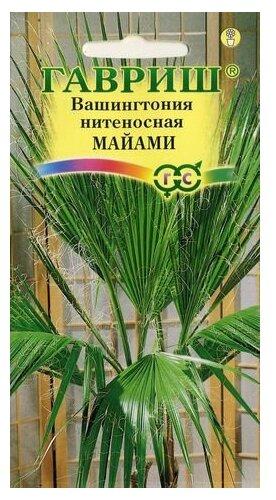 Семена Гавриш Вашингтония нитеносная Майами 3 шт.